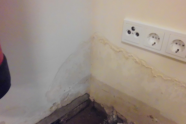 Beispielbild 2 Bautrocknung